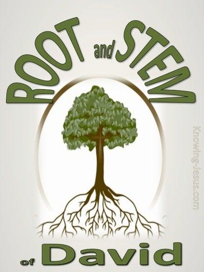 Revelation 22:16 Root and Stem of David (devotional)08:31 (green)