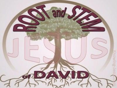 Revelation 22:16 Root And Stem Of David (maroon)
