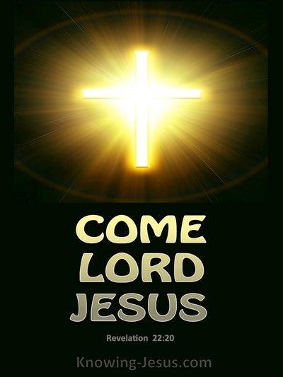 Revelation 22:20 Heaven (devotional)05:19 (brown)