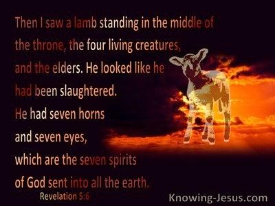 Revelation 5:6 Then I saw a Lamb (black)