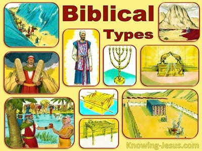 Exodus and Leviticus (devotional) (yellow)
