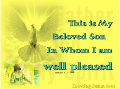Matthew 3:17 A Beautiful Picture (devotional)10-06 (yellow)