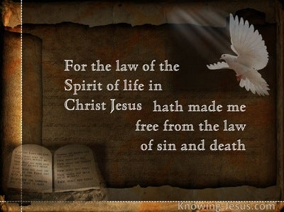 Romans 8:2 Which Law (devotional)05:04 (brown)