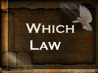 Which Law (devotional)05-04 (white)