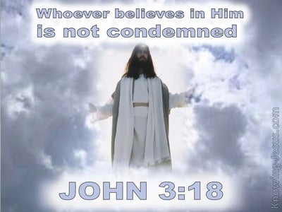 Believe It Or Not (devotional) (white) - John 3:18