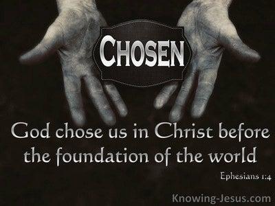Chosen By God (devotional) (black) - Ephesians 1:4