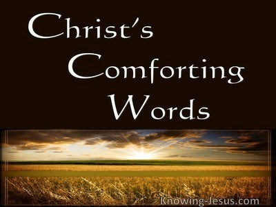 Christ's Comforting Words (devotional) (brown)