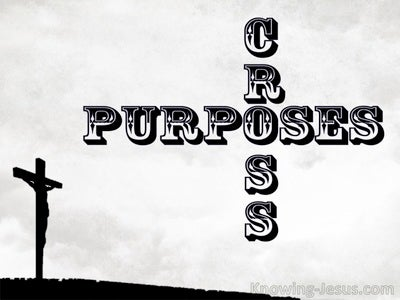 Cross Purposes (devotional)