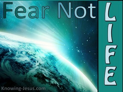 Fear Not LIFE (devotional)