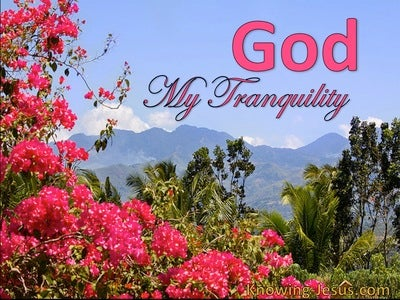 God, My Tranquility (devotional) (blue)