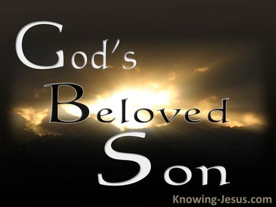 God's Beloved Son (devotional) (brown)