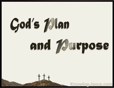 God's Plan and Purpose (devotional)11-10 (beige)