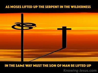 John 3:14 As Moses Lifted Up The Serpent In The Wilderness (orange)