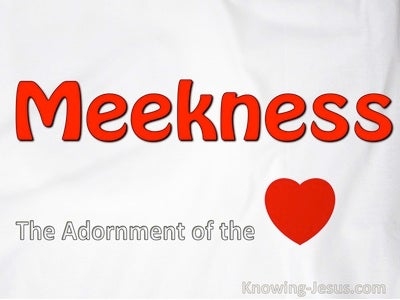 Meekness, The Adornment Of The Heart (devotional) (red) - Colossians 3:12