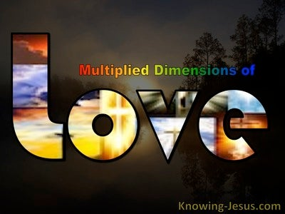Multiplied Dimensions of Love (devotional) (brown)