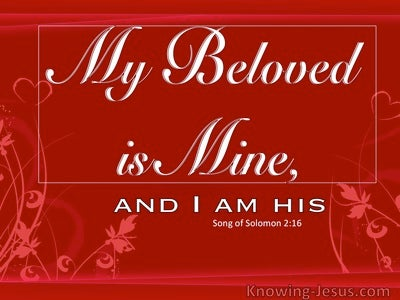 My Beloved (devotional) (red) - Song of Solomon 2:16