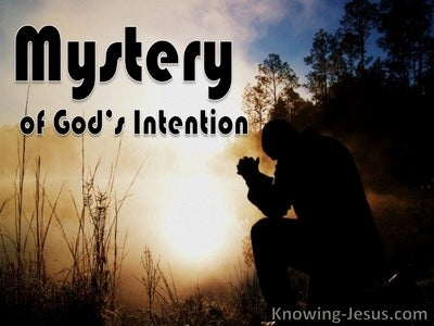 Mystery of God's Intention (devotional)07-30 (brown)