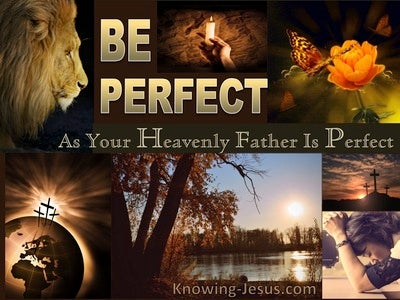 Our Perfect God (devotional) (brown) - Matthew 5:48