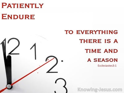 Patiently Endure (devotional) - Ecclesiastes 3:1