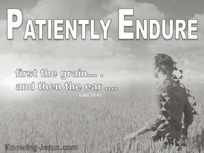 Patiently Endure (devotional) (gray) - Luke 10:41
