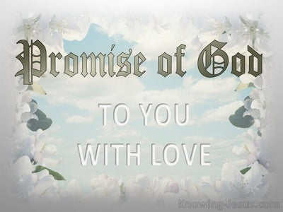 Promise of God – To You With Love (devotional) (gray)