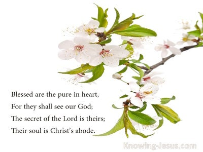 Pure In Heart (devotional) - poem