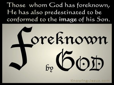 Romans 8:29 Foreknown of God  (devotional)12:01 (beige)