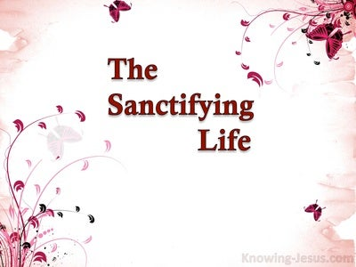 The Sanctifying Life (devotional) (pink)
