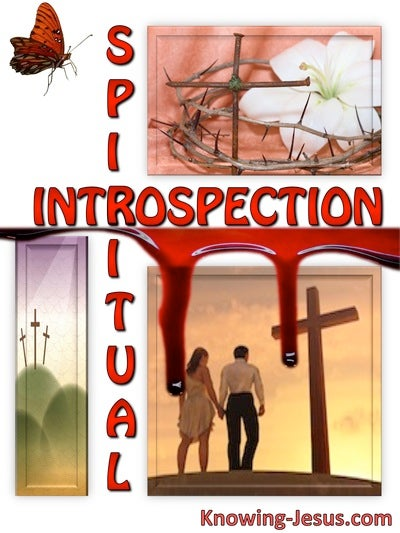 Spiritual Introspection (devotional) (red)