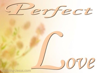 1 John 4:8 Perfect love casts out fear (white)