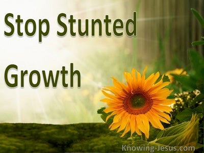 Stop Stunted Growth (devotional)