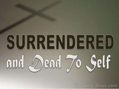 Surrendered and Dying To Self (devotional)07-24 (white)
