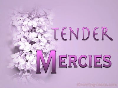 Tender Mercies (devotional)02-08 (pink)