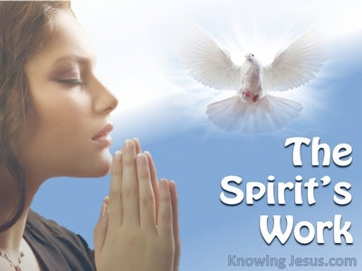 The Spirit's Work (devotional) (blue)