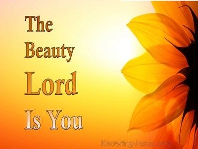 The Beauty Lord Is You (devotional)01-31 (orange)
