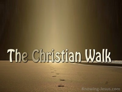 The Christian Walk (devotional) (brown)