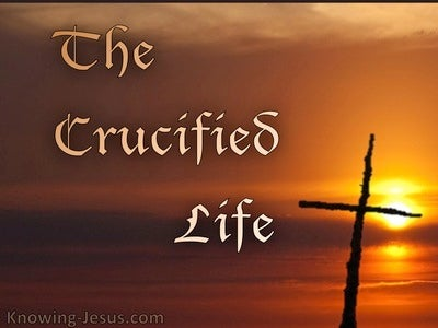 The Crucified Life (devotional) (brown)