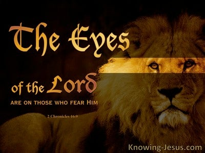 The Eyes of the Lord (devotional) : 2 Chronicles 16:9