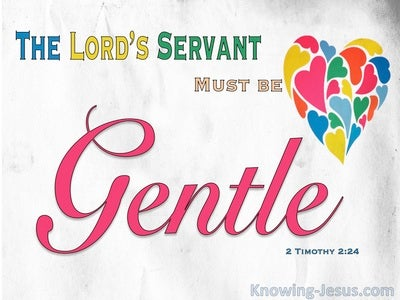 2 Timothy 2:24 The Gentle Spirit (devotional)01:19 (red)
