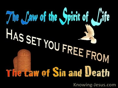 Romans 8:2 The Law Of The Spirit Of Life Has Set You Free (black)