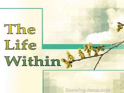 The Life Within (devotional) (green)