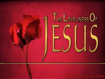 The Loveliness Of Jesus (devotional) (gold)