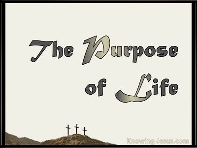 The Purpose Of Life (devotional) (beige)