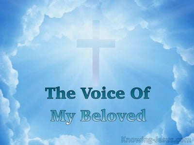 The Voice Of My Beloved (devotional) (blue)