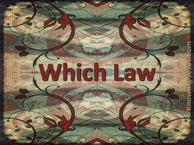 Which Law (devotional) 1