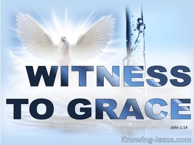 Witness to Grace (devotional) (blue) - John 1:7