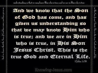 1 John 5:20 This Is The True God (black)