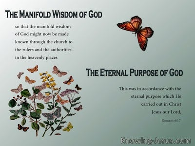 Romans 6:17 God's Eternal Purpose (devotional)08:15 (sage)