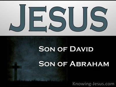Matthew 1:1 God's Perfect Plan (devotional)09:07 (gray)