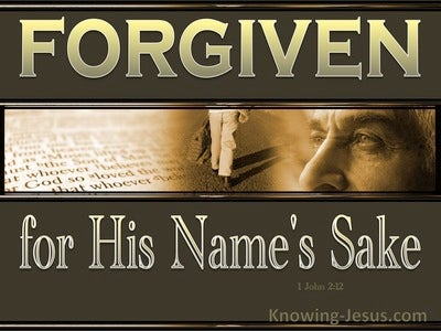 1 John 2:12 His Name's Sake 1 (devotional)09:06 (brown)